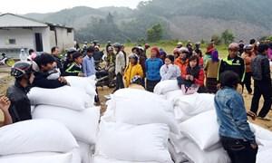 Xuất cấp 1.264,860 tấn gạo hỗ trợ nhân dân Nghệ An dịp Tết Nguyên đán