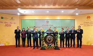 Thị trường chứng khoán Việt Nam cần lên hạng trên nền tảng vững chắc
