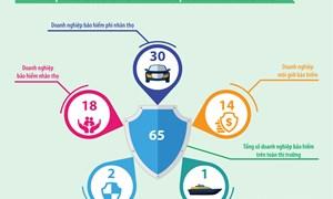 [Infographic] Bảo hiểm xã hội Việt Nam năm 2018