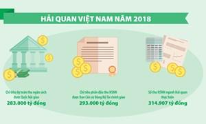 [Infographic] Hải quan Việt Nam năm 2018