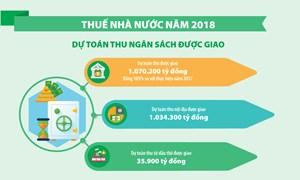 [Infographic] Thuế Nhà nước năm 2018