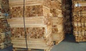 Khởi tố doanh nghiệp xuất lậu 25 container gỗ, trốn thuế gần 3 tỷ đồng