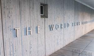 Ngân hàng Thế giới xem xét huy động các nguồn lực chống dịch nCoV