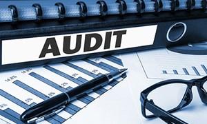 Kiểm toán Nhà nước cần một cơ chế hoạt động độc lập trong phòng, chống tham nhũng