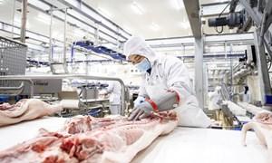 Đầu tư hàng loạt nhà máy chế biến nông sản