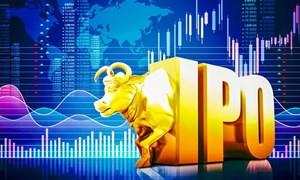 Bộ Tài chính chủ động theo dõi diễn biến của thị trường chứng khoán trong bối cảnh dịch COVID 19