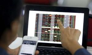 Thị trường chứng khoán Việt Nam khởi sắc trở lại
