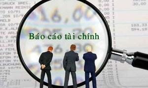 Hướng dẫn lập Báo cáo tài chính nhà nước