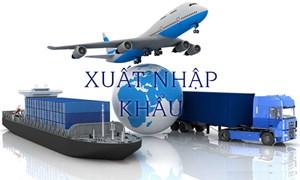 Xuất, nhập khẩu hàng hóa tháng 1/2019