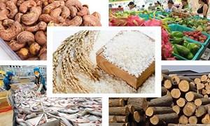Hướng đến mô hình liên kết, xuất khẩu chính ngạch