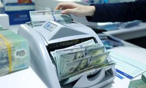 WB và IMF phối hợp đào tạo về quản lý nợ bền vững cho Việt Nam