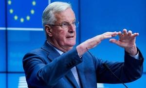 EU loại trừ thỏa thuận thương mại kiểu Canada với Anh