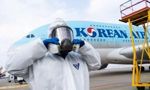 Các hãng hàng không thế giới chật vật trong mùa dịch COVID-19