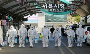 Dịch Covid-19: Hàn Quốc sắp tuyên bố Daegu là khu vực thảm họa đặc biệt