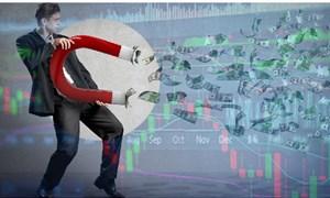 Thị trường lao dốc, nhiều nhà đầu tư vẫn kiếm đậm