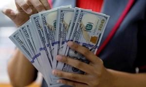 Giá USD hôm nay 25/3 giảm mạnh