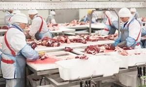 Thịt lợn Nga ồ ạt về Việt Nam, ép giá hàng trong nước giảm