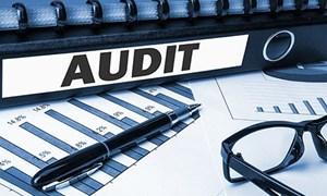 Kiểm toán Nhà nước dừng tất cả các cuộc kiểm toán đang triển khai