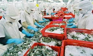 10 tỷ USD và cơ hội của xuất khẩu thủy sản