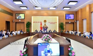 2 dự án Luật được Chính phủ đề nghị rút ra khỏi chương trình năm 2019