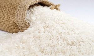 Giá gạo xuất khẩu Việt Nam thấp hơn Thái Lan 35 - 45 USD/tấn