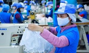 Ngành Hải quan phối hợp thông quan xuất khẩu khẩu trang vải