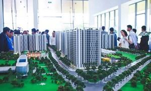 Vì sao giá bất động sản lại không giảm trong mùa dịch Covid-19?