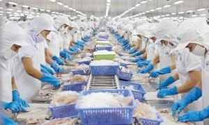 CPTPP tác động mạnh vào xuất khẩu của Việt Nam