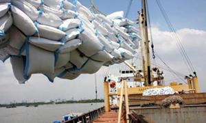 Thêm 38.000 tấn gạo nếp được xuất khẩu từ 0h ngày 26/4