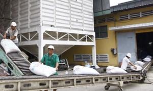 Tổng cục Hải quan loại 161 tờ khai của 22 doanh nghiệp không có gạo tại cảng