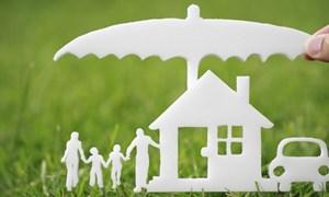 Nhà đầu tư ngoại tiếp tục đổ bộ thị trường bảo hiểm phi nhân thọ Việt