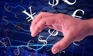 Vốn đầu tư gián tiếp nước ngoài vào ít, rút ra nhiều