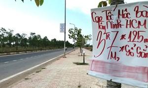 Ăn theo dự án cao tốc TP. Hồ Chí Minh - Mộc Bài