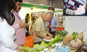 Việt Nam xuất siêu sang Ấn Độ đạt 343 triệu USD
