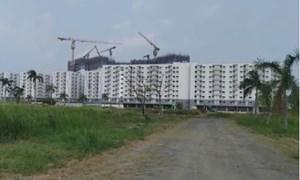 Nhiều vi phạm về quản lý nhà đất tại huyện Bình Chánh