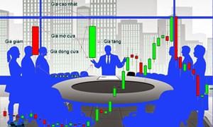 Đừng để nhà đầu tư quá đói thông tin