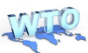 WTO có thể bị tê liệt do những bất đồng giữa các cường quốc