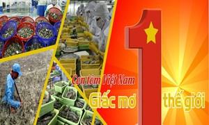 EVFTA sẽ giúp tôm Việt Nam cạnh tranh tốt hơn trên thị trường thế giới