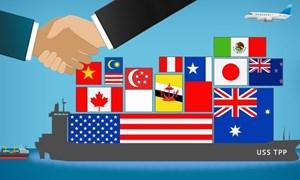 Tham gia Hiệp định CPTPP: Sẽ có nhiều chính sách thuế và thủ tục hải quan cần sửa đổi