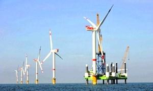 Khởi công dự án Nhà máy điện gió Hòa Bình 1 tại Bạc Liêu