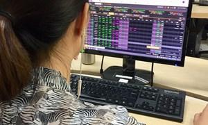 Thị trường chứng khoán 10/6: Nhóm ngân hàng dẫn dắt, cổ phiếu penny đồng loạt tăng trần