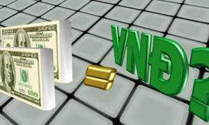 Tỷ giá ngoại tệ ngày 11/6: Giá USD đồng loạt giảm tại các NHTM