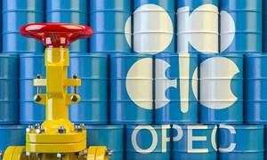 Kịch bản nào cho thị trường dầu mỏ sau khi thỏa thuận OPEC+ hết hạn?