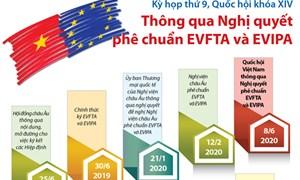 Ban hành Thông tư quy định quy tắc xuất xứ trong EVFTA