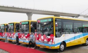 Đà Nẵng khai trương 6 tuyến xe buýt có trợ giá