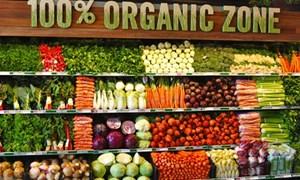 Thực phẩm hữu cơ thu hút khách hàng