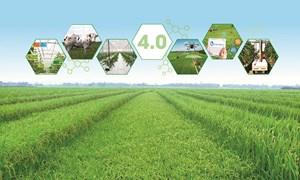 Phát triển nông nghiệp ở Việt Nam thời công nghệ 4.0