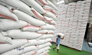Đến 31/7 sẽ hoàn thành kế hoạch mua thóc, gạo dự trữ quốc gia