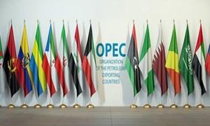 Chuyên gia nhận định về triển vọng phục hồi của nhu cầu dầu mỏ
