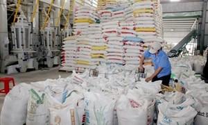 Giá trị xuất khẩu gạo 6 tháng tăng gần 18% so với cùng kỳ năm ngoái
